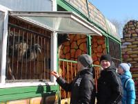Посещение скаутами зоопарка