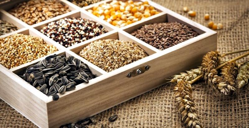 Освящение семян
