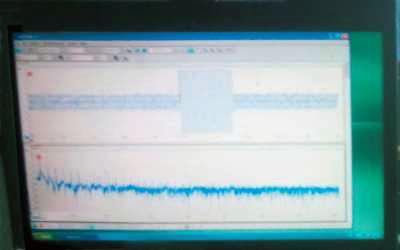 Один из зарегистрированных сигналов электромагнитного излучения в области низких частот